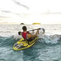 Paddle Zray